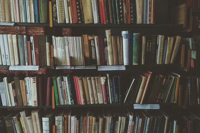 Biblioteca Pública sediará curso de preservação de livros