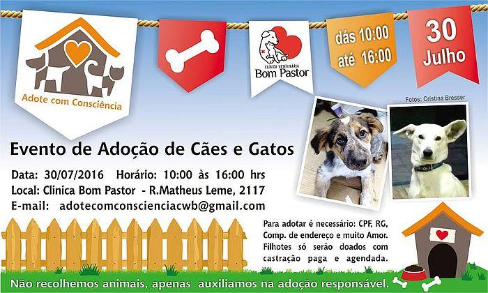 Campanha de adoção de cães e gatos do grupo Adote com Consciência será no fim de semana em Curitiba