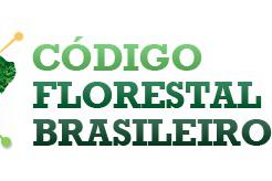 Ibape-PR esclarece profissionais e sociedade sobre novidades no código florestal brasileiro
