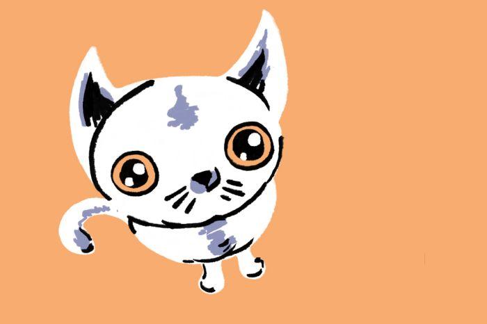 Evento une bazar e tatuagens em prol do tratamento de gatos abandonados