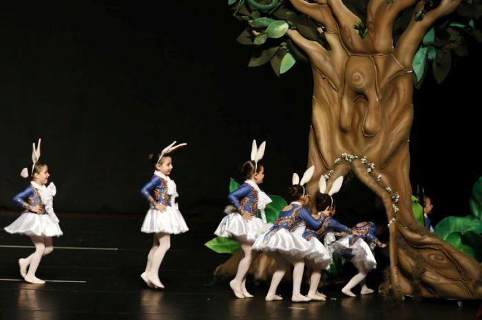 Festival de Dança gratuito leva 650 alunos aos palcos