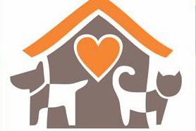 Campanha de adoção de cães neste sábado
