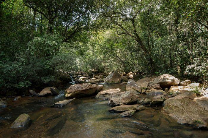 No Fórum Mundial da Água, Grupo Boticário assume compromisso público para eficiência hídrica