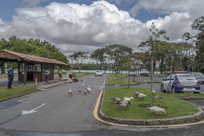 Aeroporto Afonso Pena celebra aniversário de Curitiba com exposição fotográfica