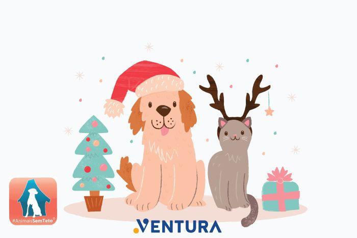 Natal Solidário no Shopping Ventura