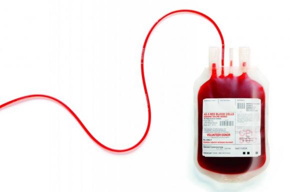 Saúde alerta para queda de 25% nas doações de sangue no inverno