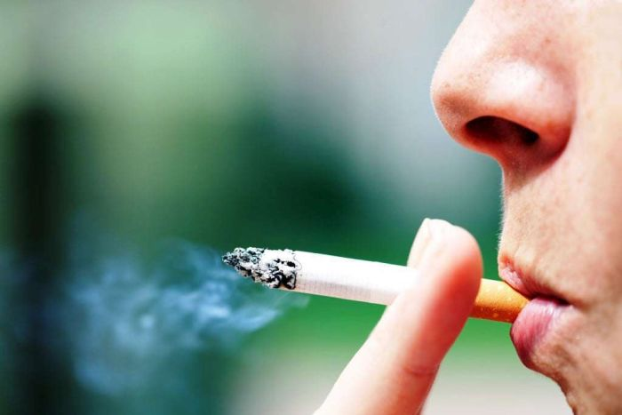 Cerca de 30% das mortes causadas pelo câncer são associadas ao tabagismo
